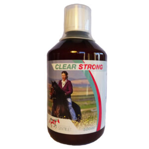 clear strong lever paard