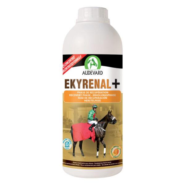 nier lever paard supplement
